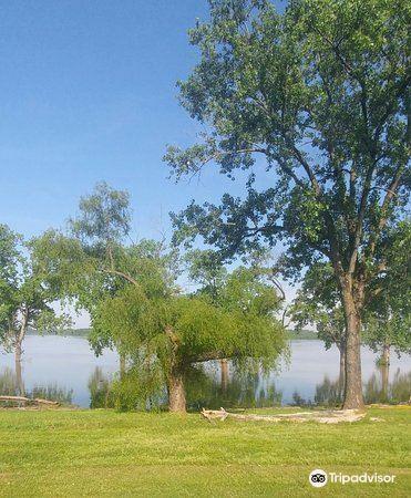 密西西比河岸綠化帶公園1