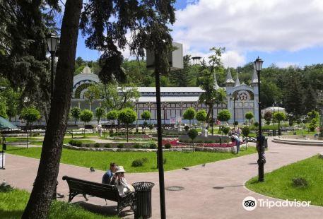 Tsvetnik Park