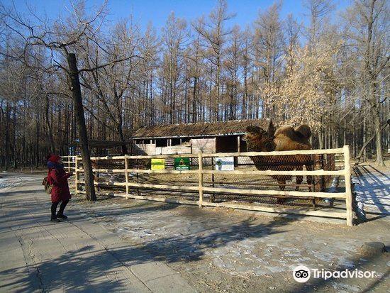 丁玲公園2