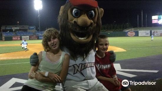 Arvest Ballpark3
