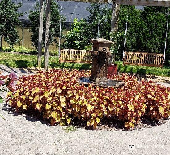 Memphis Botanic Garden2