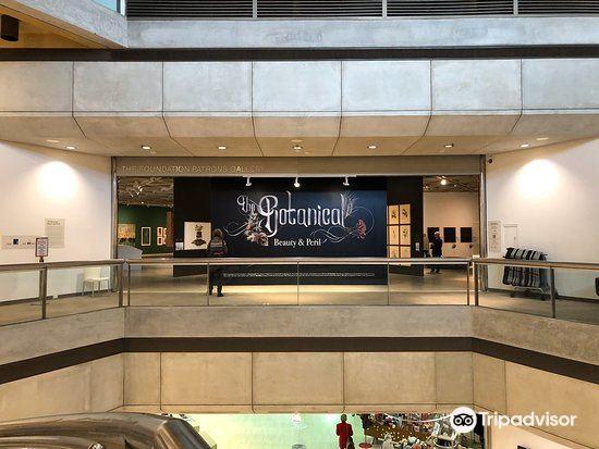 Art Gallery of Western Australia4