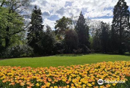 Oldenburger Schlossgarten