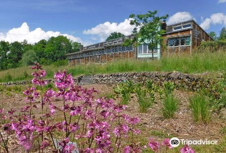 Conservatoire Botanique National du Massif Central