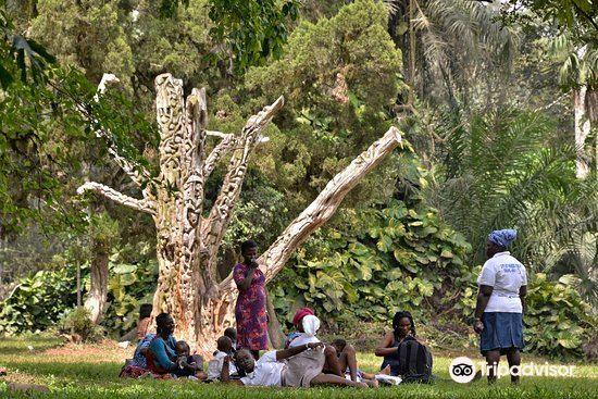 Aburi Botanical Gardens1