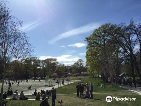 Vasaparkens Parklek2