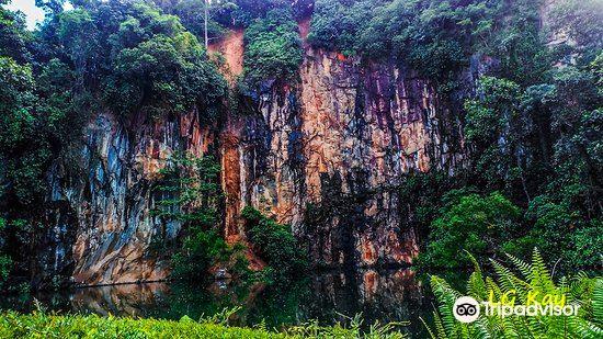 Bukit Batok Nature Park4
