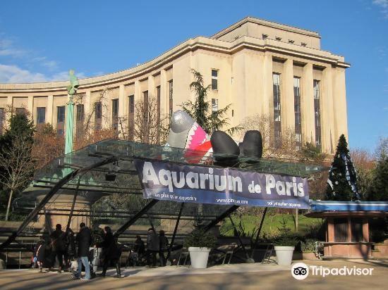 Aquarium de Paris - CineAqua