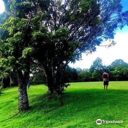 Salisbury Oval2