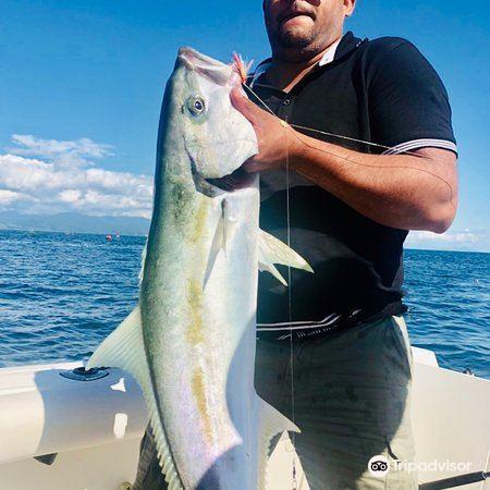 瓦卡瓦灣3