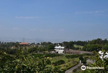 Yunxian Farm