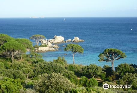 Reserve Naturelle des Iles Cerbicales