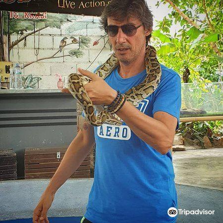 Ao Nang Snake Show2