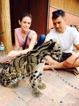 Zoological Wildlife Foundation1