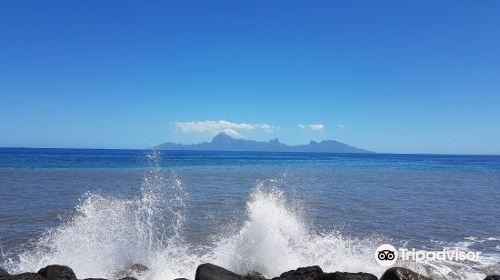 Museum of Tahiti and Her Islands