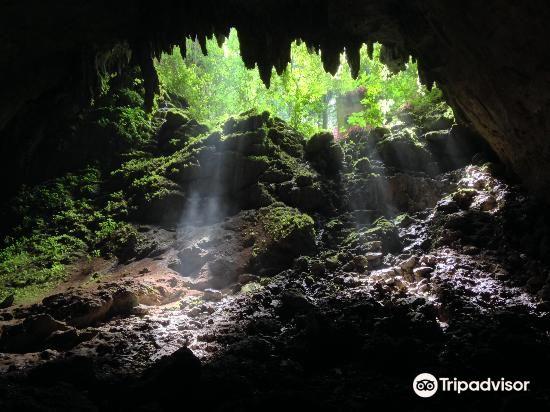 里約熱內盧佳美洞公園 (Parque de las Cavernas del Rio Camuy)2