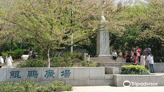 뤄자산(낙가산)3