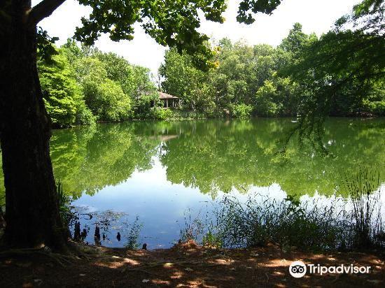 San Antonio Botanical Garden4