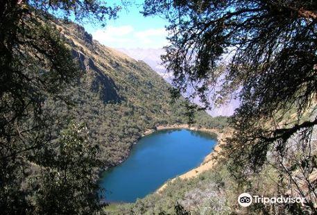 Laguna Yananocha