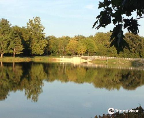 Homer Lake Forest Preserve