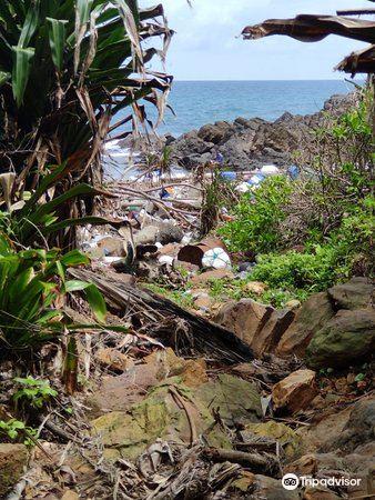 Kapas Island3