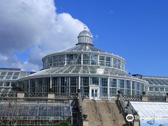 Botanical Gardens (Botanisk Have)2