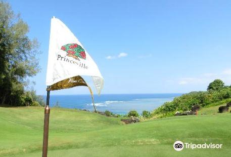 可愛島王子高爾夫球場