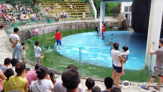 Wenzhou Zoo3