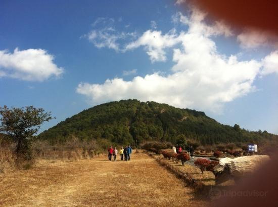 來鳳山森林公園4