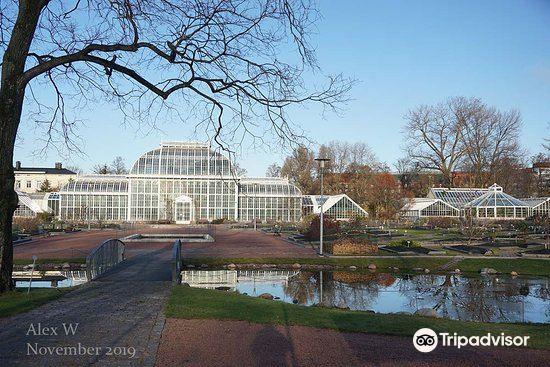 Kaisaniemi Botanic Garden4