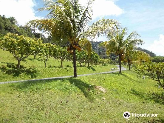 MARDI Langkawi Agro Technology Park3