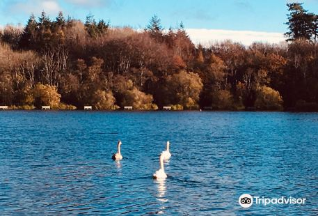 Loughgall Country Park