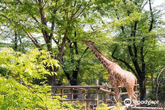 羽村市動物公園1