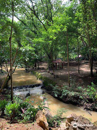 Gua Kelam Recreational Park4
