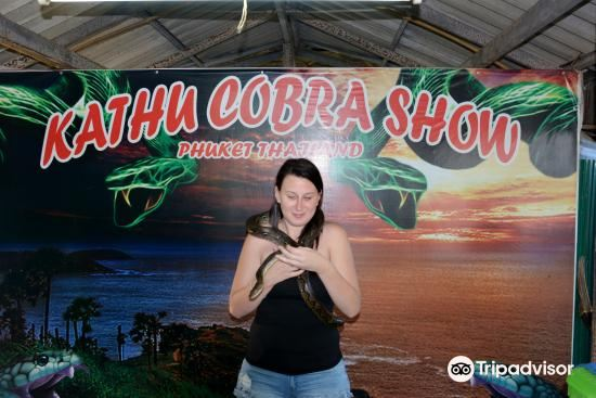 Phuket Cobra Show and Snake Farm3
