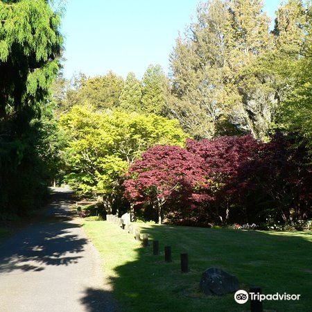 Waipahihi Botanical Gardens2