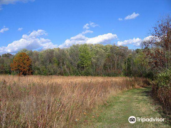 Owens Conservation Park2