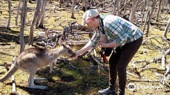 Phillip Island Wildlife Park2