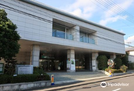 Kyoto Museum for World Peace, Ritsumeikan University