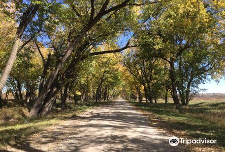 Loess Bluffs National Wildlife Refuge