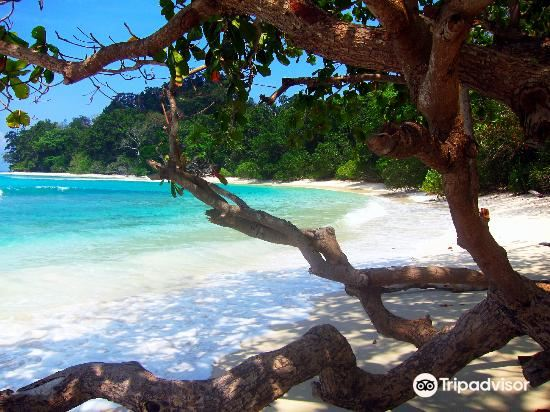Radhanagar Beach1
