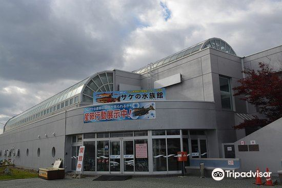 Shibetsu Salmon Park2