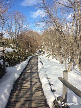 Kushiro Shitsugen Observatory Boardwalk2