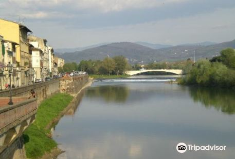 Via Cavour Firenze