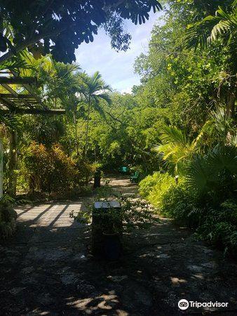 Garden of the Groves3