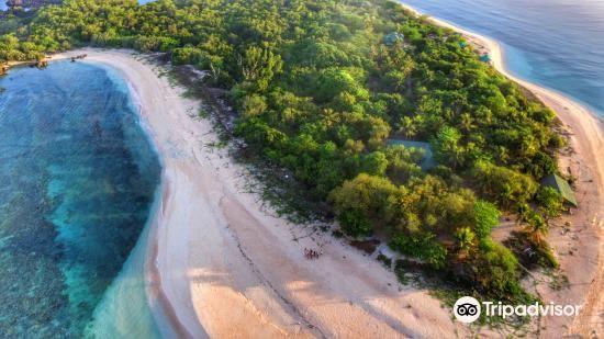 Apo Reef Natural Park2