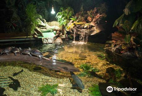 St Andrews Aquarium Ltd