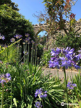 Ventnor Botanic Garden2