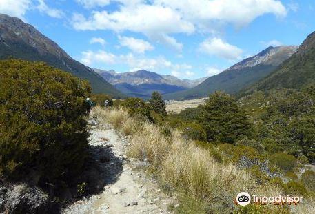 Greenstone and Caples Tracks