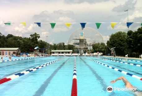 Olympic Basin (Basin Olympique)
